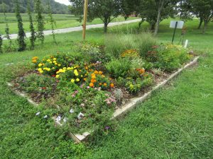 Landscape bed with flowers at Mills River, NC